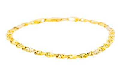 14 Karaat bicolor gouden Valkoog Schakelarmband - 19,5 cm
