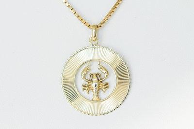 14 Karaat gouden hanger sterrenbeeld Kreeft(21 juni-22 juli)