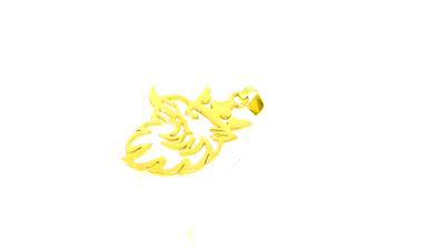 14 karaat geel gouden SCANIA hanger (Griffioen)